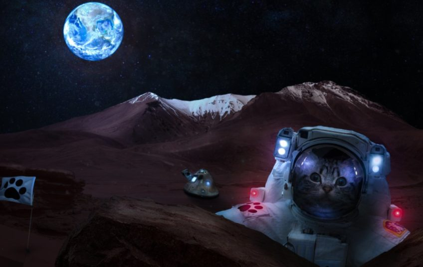 Material lunar con urea